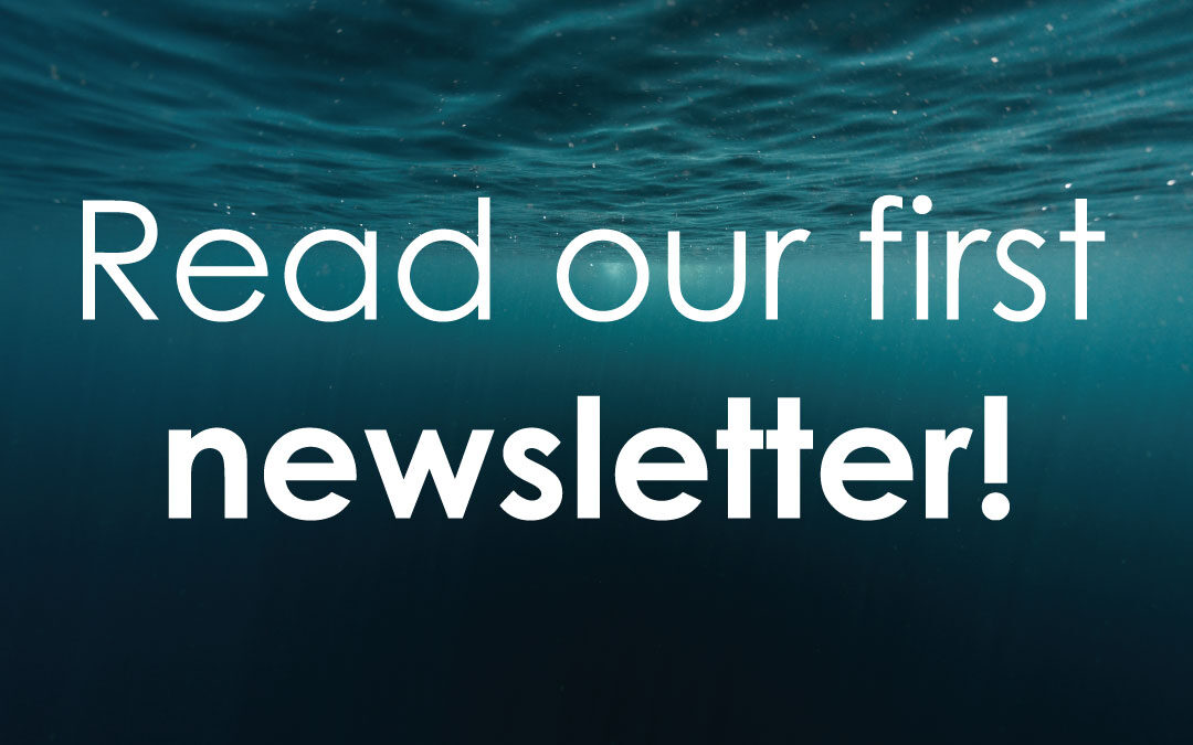 Read our 1st newsletter and subscribe!